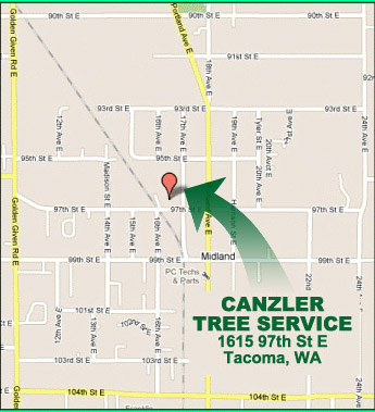 canzler tree service location map